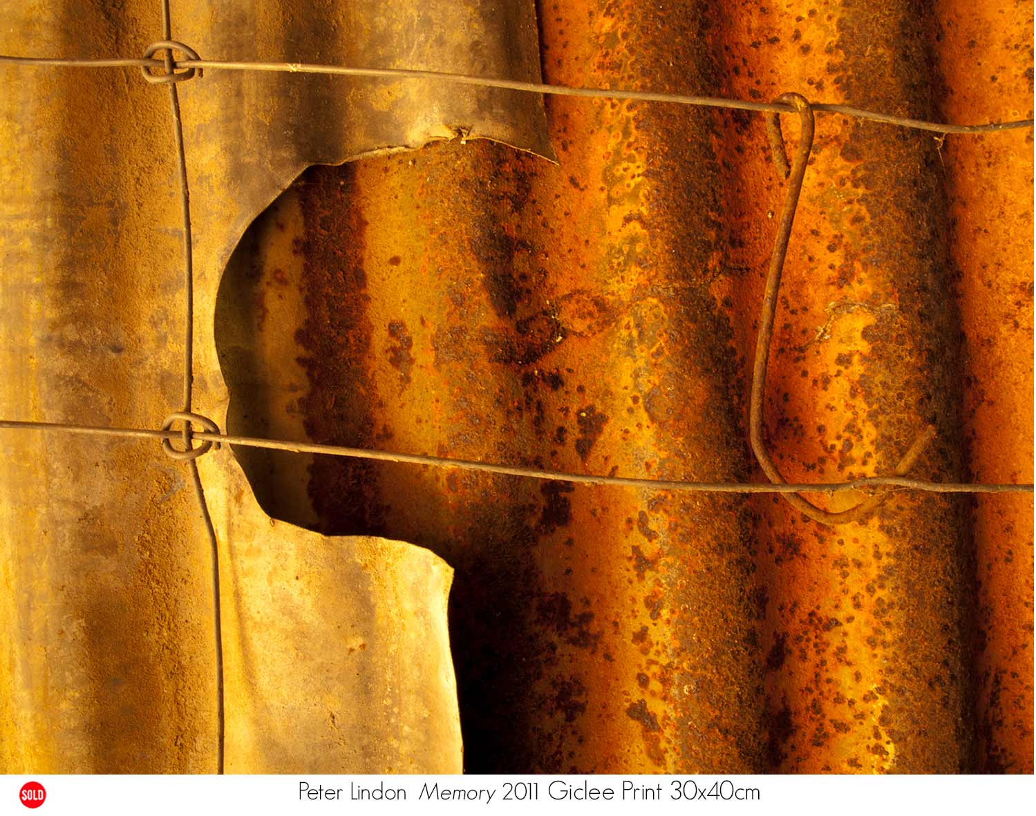 Peter Lindon - Collector's Choice 2011. Artsite Gallery,  26 November - 11 December 2011.