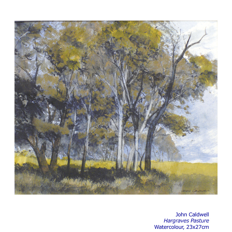 Collectors Choice 2013 - Artsite Gallery 30 November - 15 December - Artists include: John Caldwell