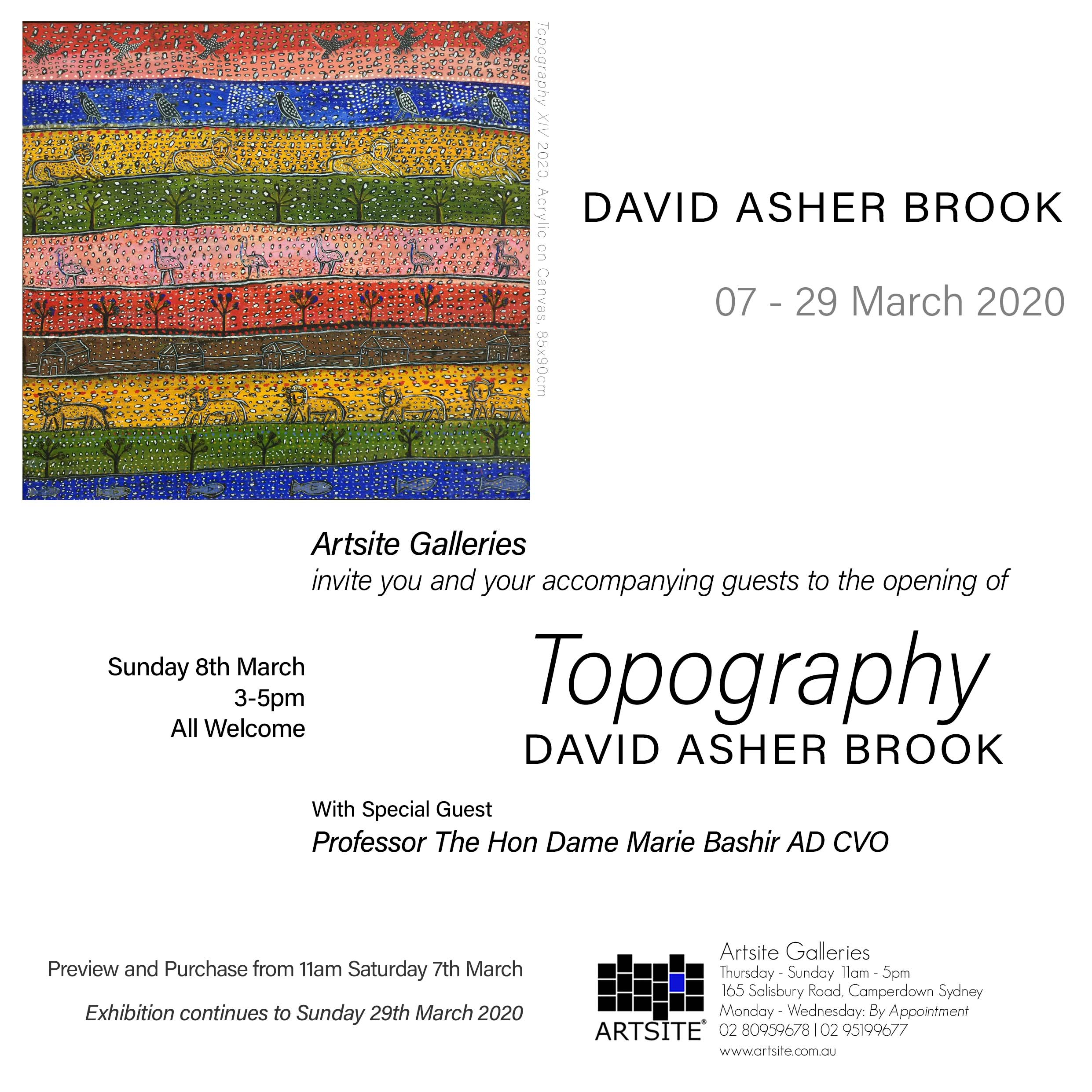 Artsite Gallery Exhibition | Topography: David Asher Brook. | Solo Exhibition | Opening event with Professor The Hon Dame Marie Bashir AD CVO | 3-5pm Sunday 08 March 2020 | All Welcome.