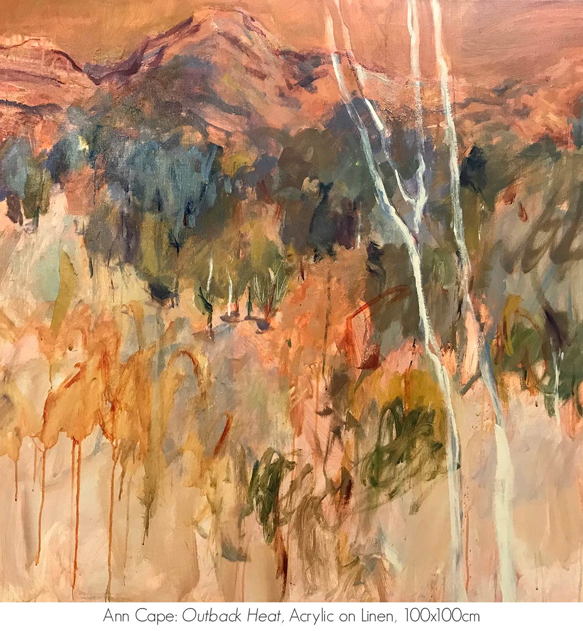 Artsite Galleries Exhibition | REFLECTIONS OF AN ANCIENT LAND: The MacDonnell Ranges | Ann Cape. Exhibition is Open June - July 2020. Saturdays and Sundays 11am - 5pm and By Appointment Monday - Friday.