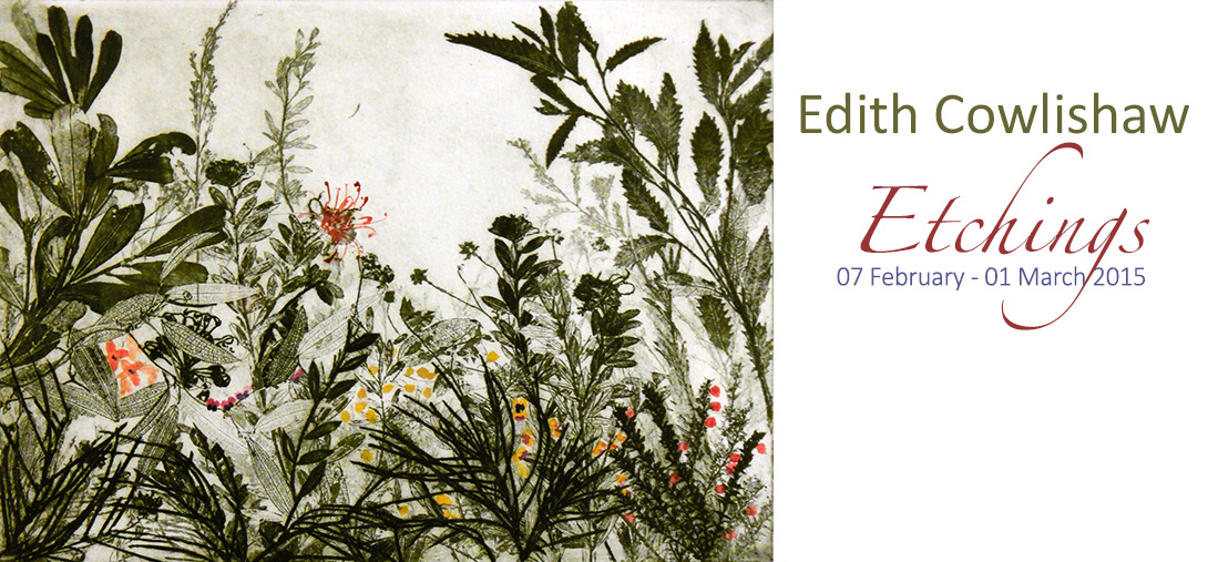 View Exhibition at Artsite Gallery, 07 February - 01 March 2015: Edith Cowlishaw - Etchings - Solo Exhibition