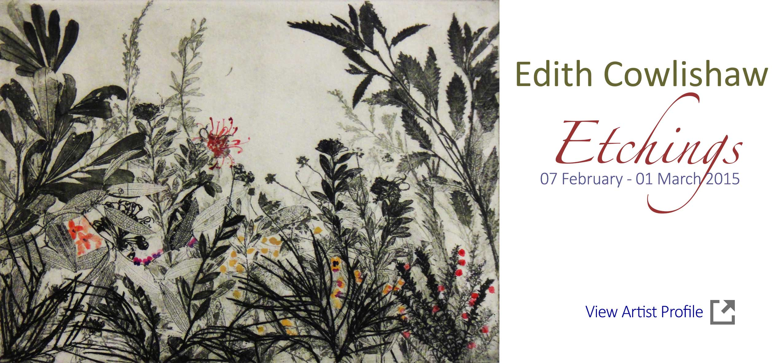Artsite Gallery Exhibition  - Edith Cowlishaw - Etchings. Solo Exhibition - 07 February - 01 March 2015