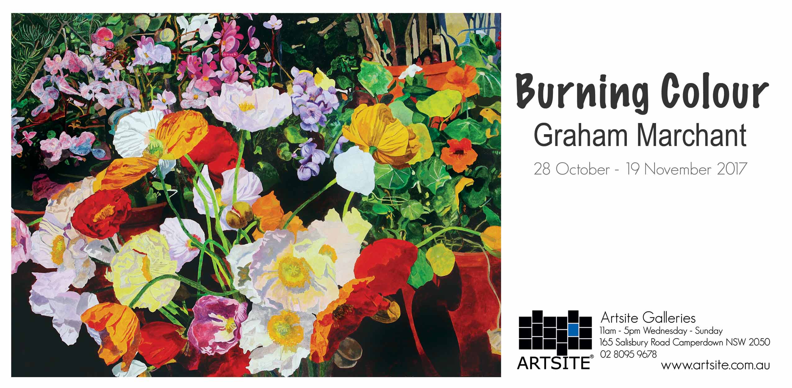 Burning Colour: Graham Marchant, Artsite Gallery, 28 October-November 2017.