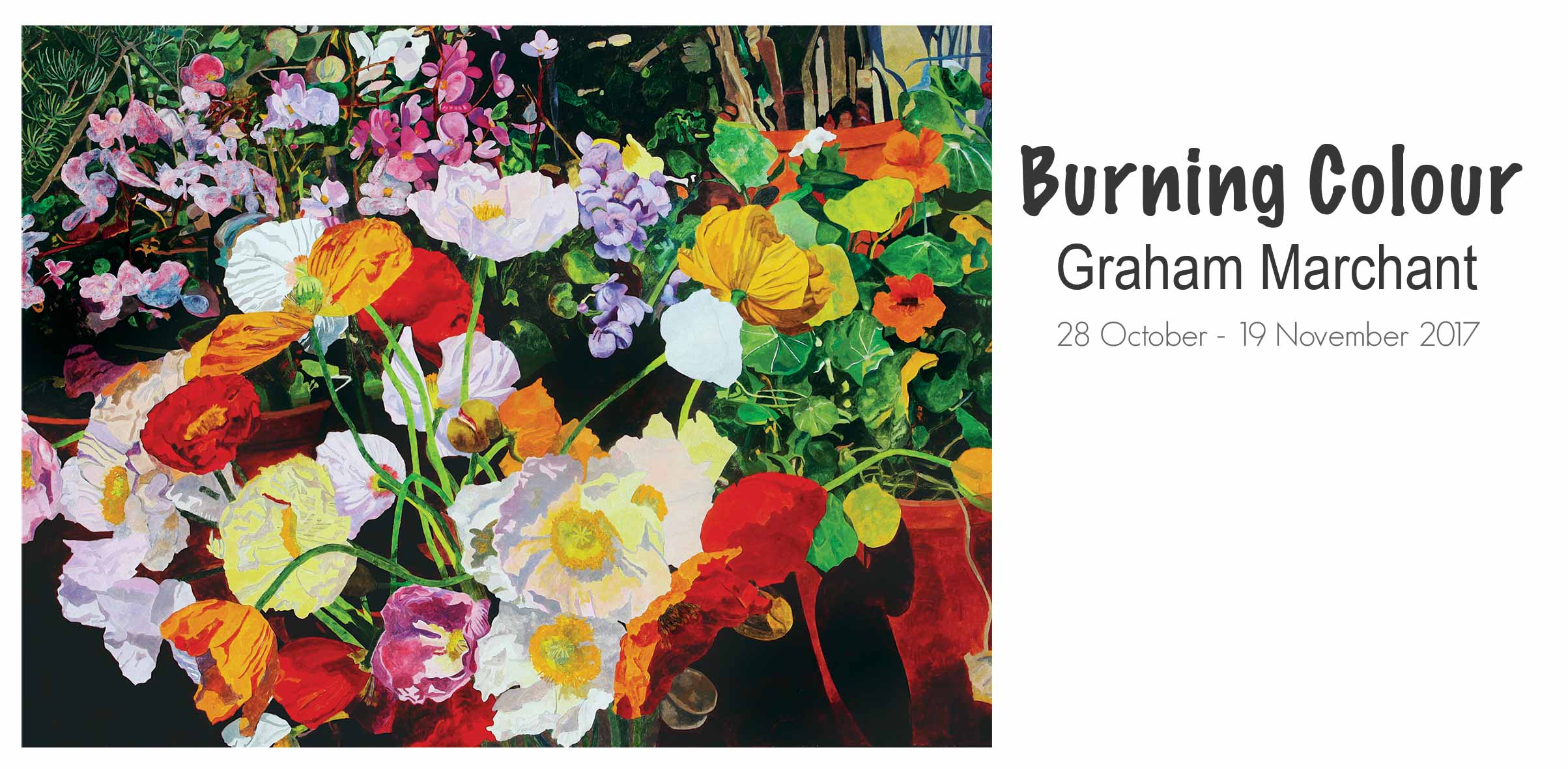 New Exhibition at Artsite Galleries, Sydney. Burning Colour: Graham Marchant, 28 October - 19th November 2017.