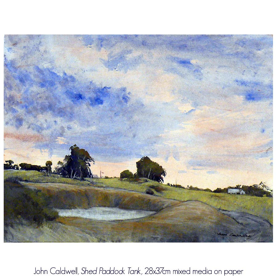 John Caldwell: Caldwell Country Unframed. Solo Exhibition. Artsite Gallery  04 - 26 June 2016.