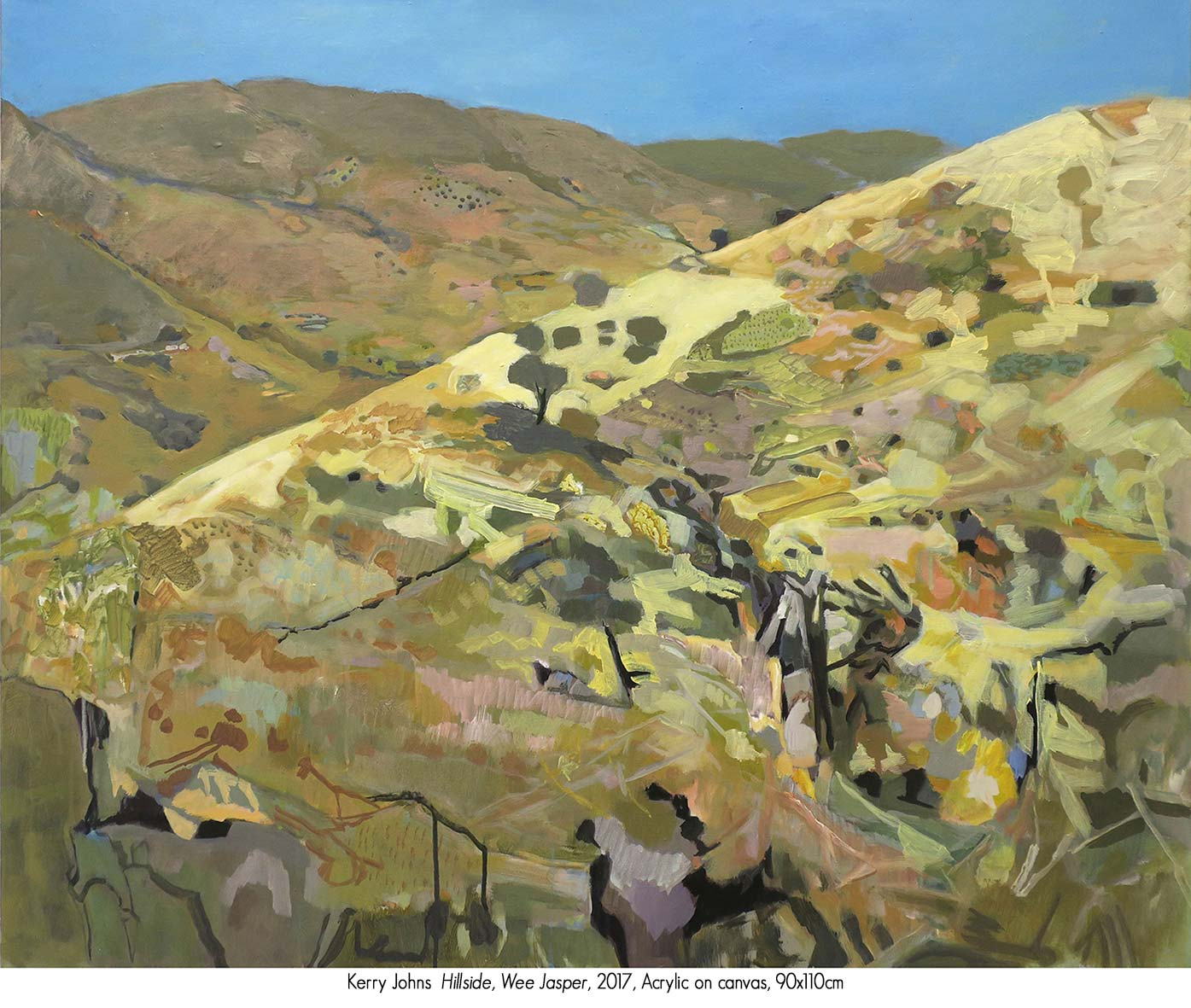 Kerry Johns: The Lie of the Land. Solo Exhibition Gallery Two, Artsite Gallery 05 - 27 August 2017